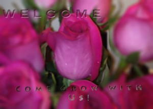 WELCOMEwith roses